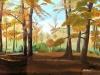 bosco-maglie