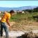 Azienda Belisario – Sarconi – Trebbiatura Ottobre 2014 di Giuseppe Bartolomeo