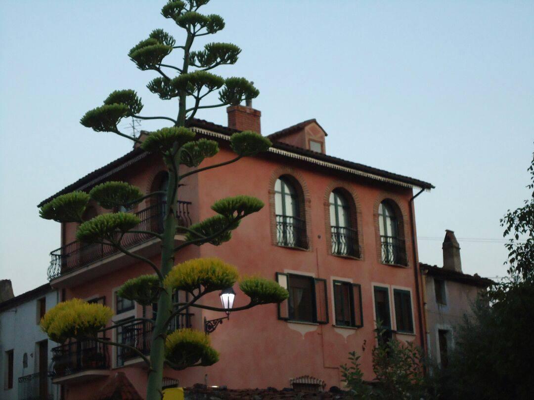 Foto di Velia Castelluccio
