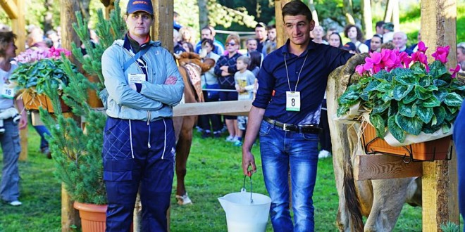Sebastiano Carlomagno, di Sarconi, primo tra i mungitori al Campionato del mondo con una vacca non propria
